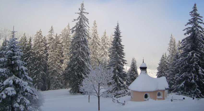 small-chapel-under-the-snow-with-trees