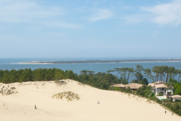 picture showing a Landscape with a sand dune, trees and in blue sea and blue sky in the back