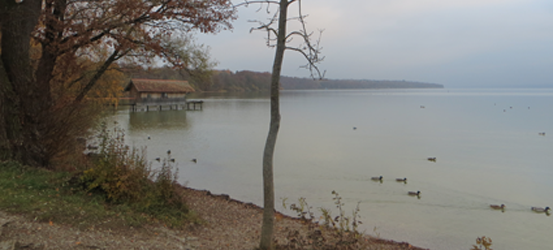 image-of-a-lake-in-late-autumn