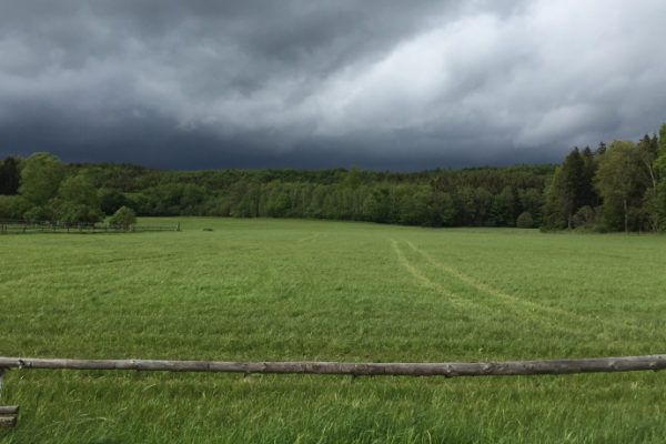 Green meadow with storm gathering on the background