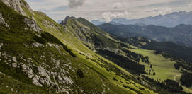 banner_ecovadis-green-mountains