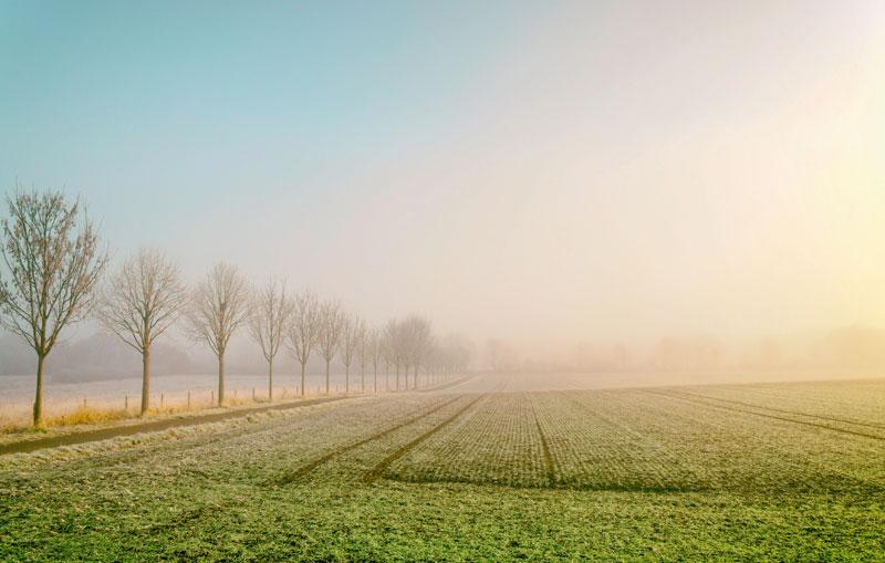 csr berichtspflicht Winterlandschaft