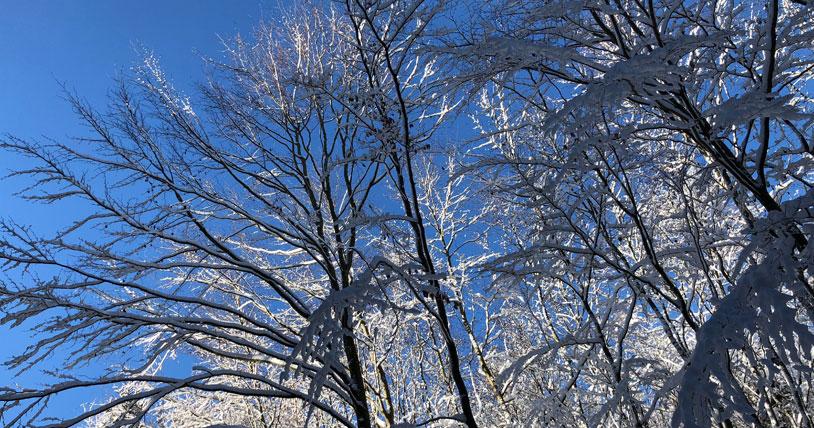 blue-winter-sky