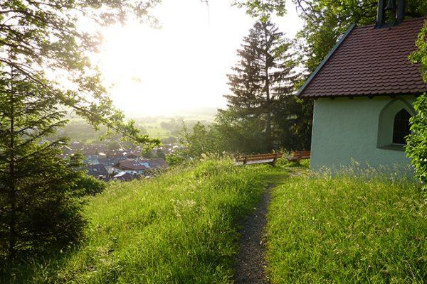 Blog_Summer_49