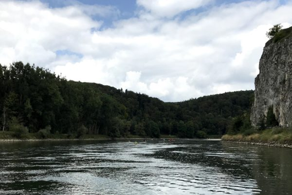 picture showing a river and a forest illustrating the blog entry about the PSCI principles