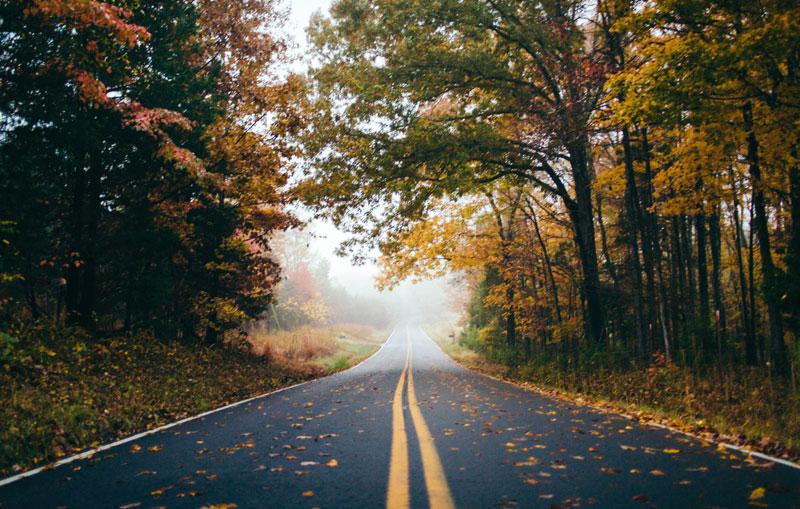 image-autumn-street-automotive-witepaper