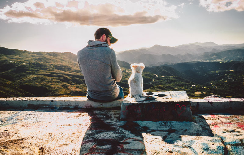 picture of a man and a dog in front of mountains