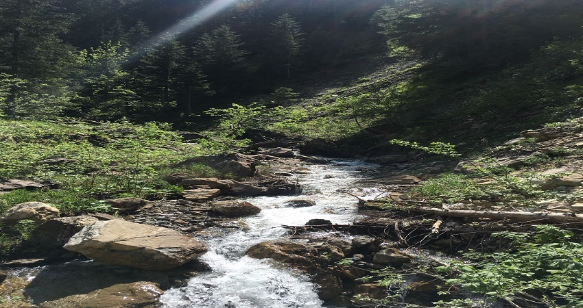 picture of a mountain stream illustrating the blog entry about sustainable development goals