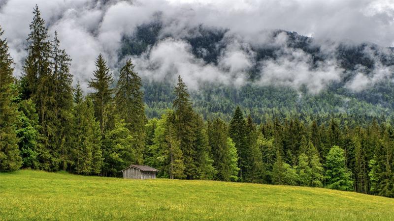 Top 16 Proplems of Carbon Footprint