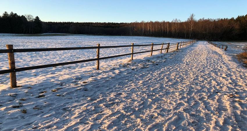 Winter_field